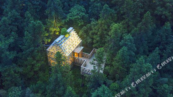 ZYJ Treehouse Land