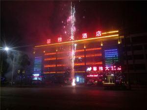 勉縣馨雅大酒店