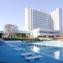 成田拉迪森酒店(Radisson Hotel Narita)