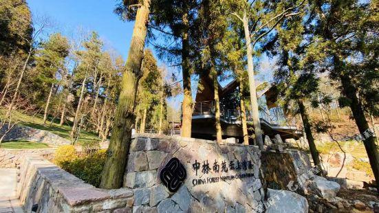 Ningbo Zhonglin Nanyuan Yunshang Qingxi Hotel