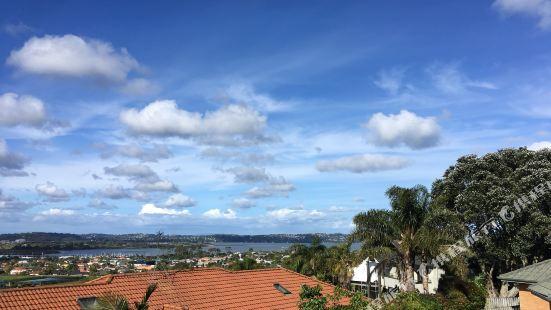 Popular Auckland Apartments