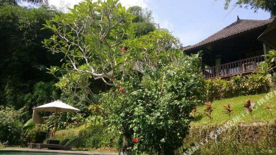 Villa Wedang