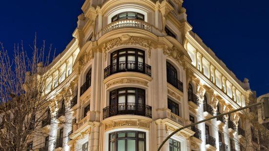 馬德里薩爾第耐羅酒店