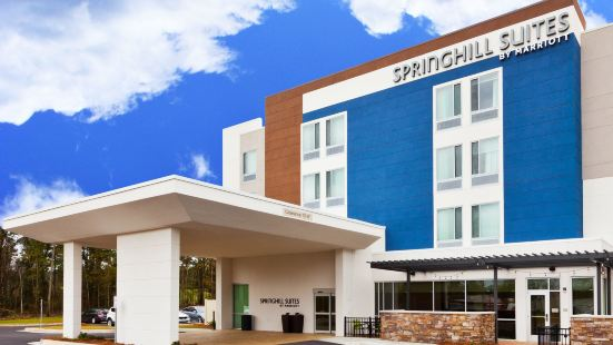 SpringHill Suites by Marriott Montgomery Prattville/Millbrook