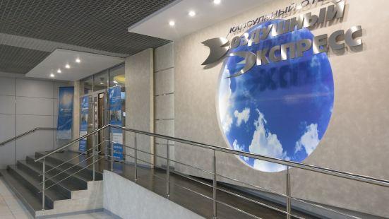 Air Express SVO Terminal Aeroexpress