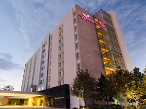 維多利亞行政酒店(Victoria Ejecutivo)