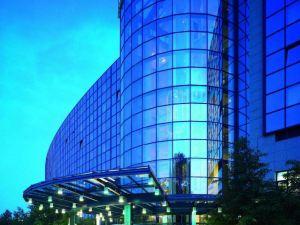瑪麗蒂姆漢諾威酒店(Maritim Airport Hotel Hannover)