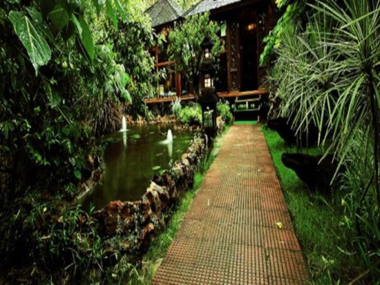 树屋度假村(the tree house resort)
