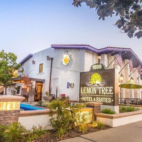 더 레몬 트리 호텔