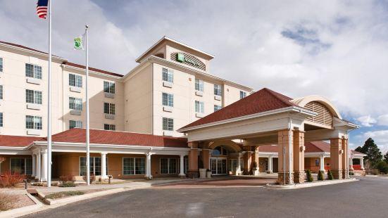 科羅拉多斯普林斯- 機場假日酒店