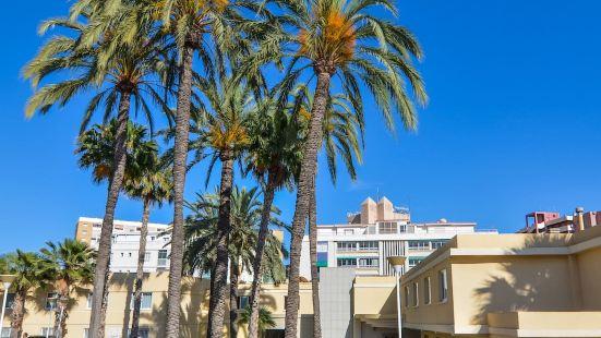 阿利坎特港聖胡安海灘酒店