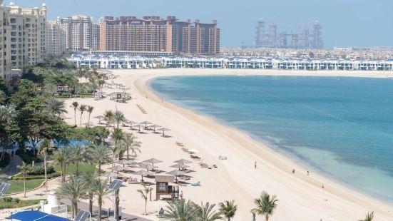 Beautiful Sea View Palm