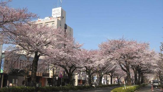 日立永安國際酒店