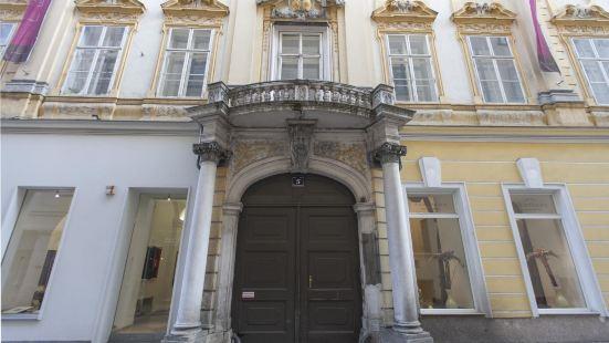 維也納市中心豪華公寓
