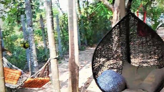 La Maison des Bambous Lmdbsr