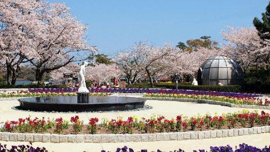 Park Kotoshiba