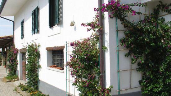 Tenuta Monte Sant'Angelo