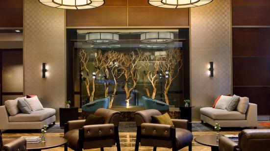 金普頓繆斯酒店
