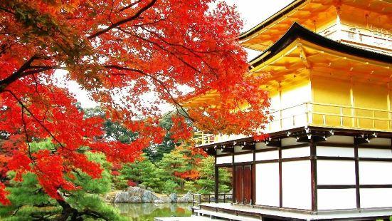 京宿八重櫻花旅館