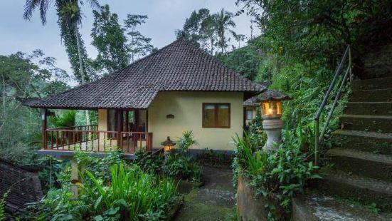 Bali Eco Adventure & Retreat Center