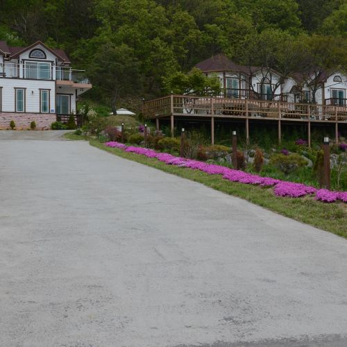 Forest of Color Pension