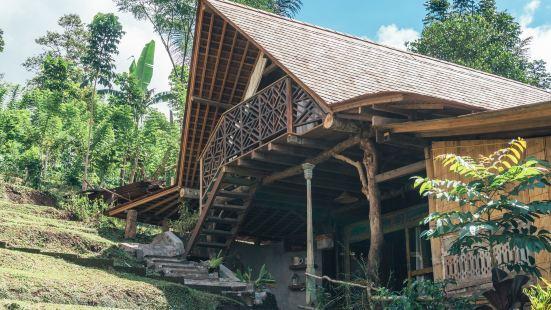 Batukaru Coffee Estate Hostel Bali