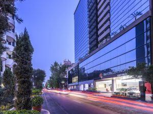 NH典藏墨西哥城公寓(NH Collection Mexico City Reforma)