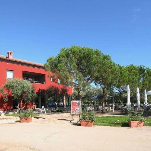 Apartments Oliveto