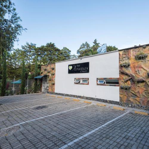 艾揚達 1229 阿羅馬克斯鄉村酒店