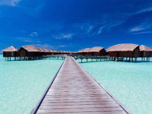 馬爾代夫安納塔拉迪古度假酒店(Anantara Dhigu Maldives Resort)