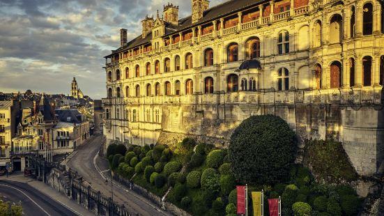 布盧瓦中心城堡宜必思酒店