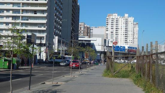 711A Apartamento Estudio Plaza Viña