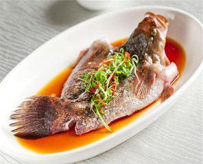 遂川上海野生动物园附近抵扣、美食午餐券餐饮十大美食上海图片