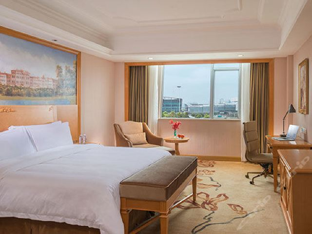维也纳国际酒店(上海野生动物园店)(豪华单人间)