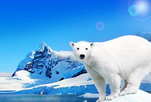 格陵兰冰岛