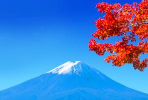 日本秋色枫情