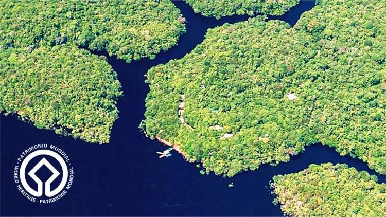 世界遗产 亚马逊雨林