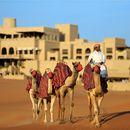 阿布扎比安納塔拉蓋斯爾阿薩拉沙漠度假村(Qasr Al Sarab Desert Resort by Anantara Abu Dhabi)