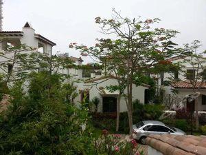 陵水清水湾地址v地址私人海湾酒店,陵水清水湾别墅夏威夷别墅照片