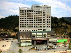 桂東玲瓏王國際大酒店