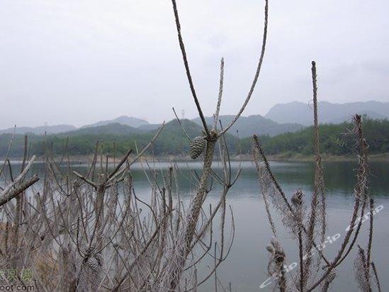 千岛湖伊叶舟民宿(原姜家耕耘农庄)