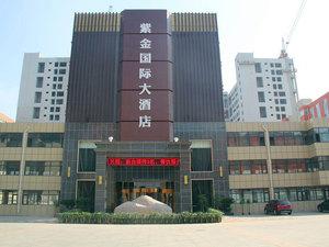 東阿紫金國際大酒店