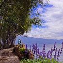 大理桃源1號海景花園度假酒店