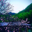 臨安太湖源從前·慢民宿