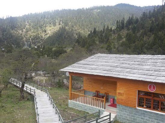 林芝鲁朗花海森林别墅度假村图片