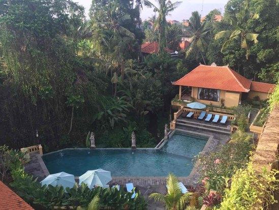 巴厘岛乌布瑟瑞小屋酒店预订及价格查询【携程海外】