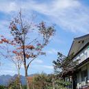 戶隱康元林道民宿酒店(Togakushi- Kogen Minshuku Rindo)