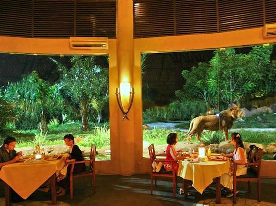 印度尼西亚巴厘岛6日4晚跟团游(4钻)·入住野生动物园
