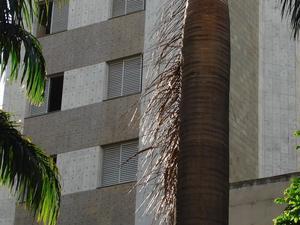 普拉查里博德酒店(Praça da Liberdade Hotel)
