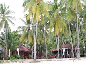熱浪島天堂度假村(Redang Paradise Resort)